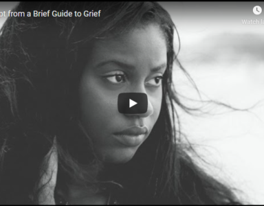 An excerpt of the Narrated Slideshow from A BRIEF GUIDE TO GRIEF